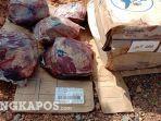 barang-bukti-daging-beku-impor.jpg