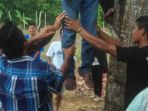 budi-warga-desa-terak-diduga-tewas-gantung-diri-di-pohon-akasia_20181014_120501.jpg