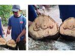 capture-tangkapan-layar-tulisan-arab-di-potongan-batang-pohon-3.jpg
