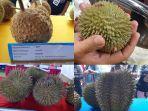 durian-unik.jpg