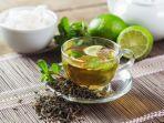 freepikcom-ilustrasi-teh-herbal.jpg