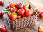 freepikcomsiraphol-s-inilah-4-manfaat-apel.jpg