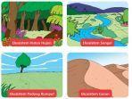 ilustrasi-berbagai-ekosistem.jpg