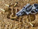 ilustrasi-pistol2.jpg