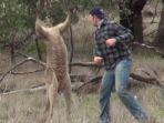 kangguru_20161206_230405.jpg