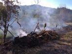 kebakaran-hutan_20170805_091215.jpg