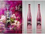 kolase-minuman-paling-mahal-fillico-dan-bling-h2os-the-ten-thousand.jpg