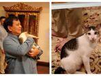 kucing-milik-prabowo-subianto.jpg