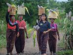 maria-loretha-tanpa-keranjang-di-kepala-berjalan-bersama-petani-perempuan-di-desa-likotuden.jpg