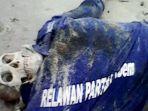 mayat-berkaos-relawan-partai-nasdem-mengapung-di-pantai-pasir-panjang_20161207_141307.jpg