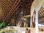 mengenal-bambu-material-aman-gempa-cara-cegah-dari-serangan-rayap.jpg