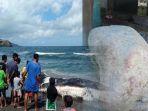 nelayan-temukan-muntahan-ikan-paus-di-kupang_20180420_230925.jpg