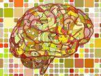 otak-manusia-dan-hard-disk.jpg