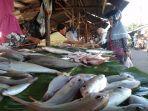 pembeli-berbelanja-ikan-di-pasar-baro-tanjungpandan_20180726_174442.jpg