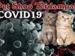 pet-shop123.jpg