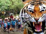 putri-malah-diterkam-anak-harimau-benggala-di-jatim-park-2_20170316_075117.jpg