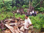 razia-illegal-logging-di-tahura-menumbing.jpg