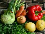 sayuran-segar.jpg