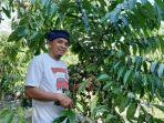 seorang-petani-kopi-di-desa-petaling-banjar.jpg