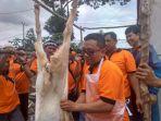 supriyanto-mengajarkan-para-peserta-bimtek-cara-menguliti-kambing_20180808_125516.jpg