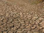 tanah-pecah-akibat-kemarau_20160122_231852.jpg
