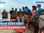 tanam-5000-bibit-pohon-mangrove-di-kampung-nelayan-2.jpg