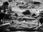 tim-penelitian-arkeologi-goa-harimau-sedang-melakukan.jpg