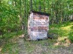 tribun-travel-jamban-atau-toilet-tengah-hutan-yang-dalamnya-mengejutkan.jpg