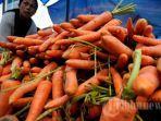 wortel-dari-aceh-indonesia.jpg