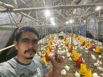 yahya-peternak-ayam-di-desa-perawas-kecamatan-tanjungpandan-kabupaten-belitung.jpg