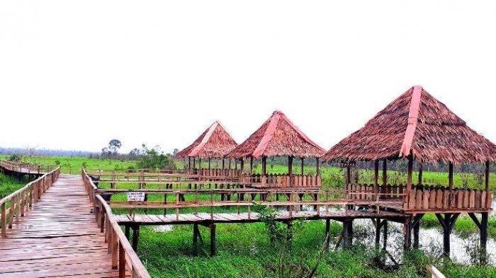 Wisata Alam, Asiknya Menyisiri Sungai Upang di Bangka