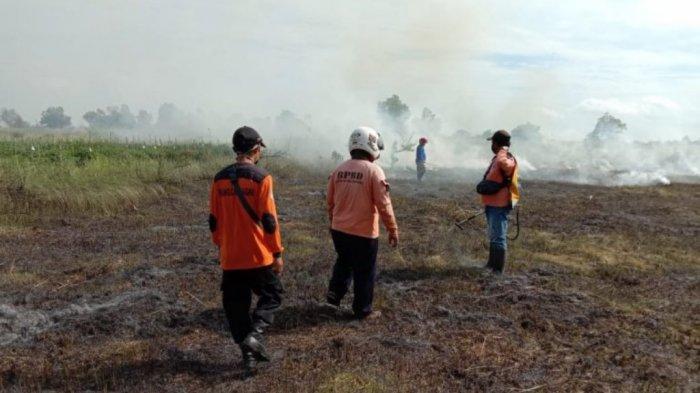 Pelaku Pembakaran Area Persawahan di Landasan Ulin Belum Diketahui
