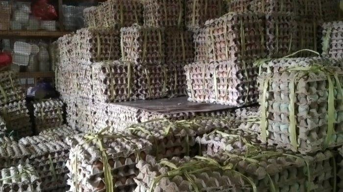 Bisnis Telur Ayam Ras di Tapin Menggeliat Jelang Ramadhan, Harga Tetap