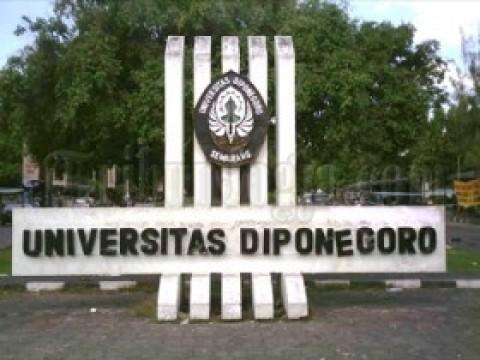 Link Pengumuman Ujian Jalur Mandiri (UM) Universitas Diponegoro (UNDIP), Klik di Sini