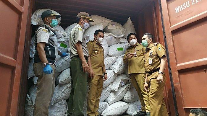 Tak Seperti di Jawa, Harga Porang di Kalsel Stabil Rp 7.500 Perkilogram, Begini Respon Petani