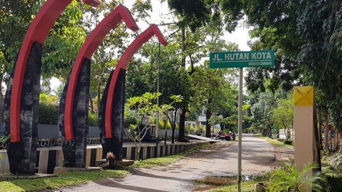 Wisata Kalsel Orchid Park Pelaihari, Berada di Kawasan Perkantoran Tanahlaut, Diapit Dua Taman