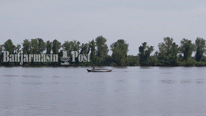 BKSDA di Kotawaring Timur Merespons Positif Wacana Taman Buaya di Sungai Mentaya