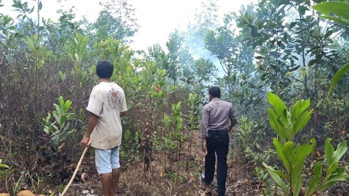Badan Penanggulangan Bencana Daerah HSS Temukan Sejumlah Titik Api