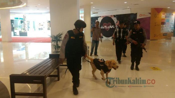 Imbas Bom Surabaya, Mal-mal di Jakarta Kerahkan Pasukan Anjing Pelacak