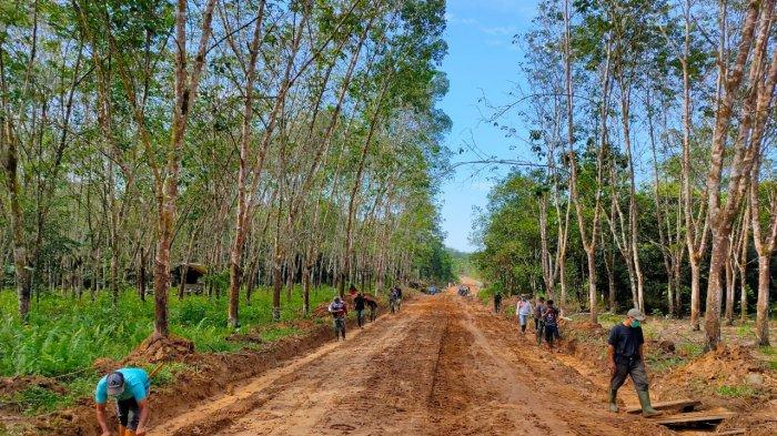 Badan jalan penghubung yang dikerjakan dalam TMMD ke 110 Kodim 1008 Tanjung di Desa Lok Batu