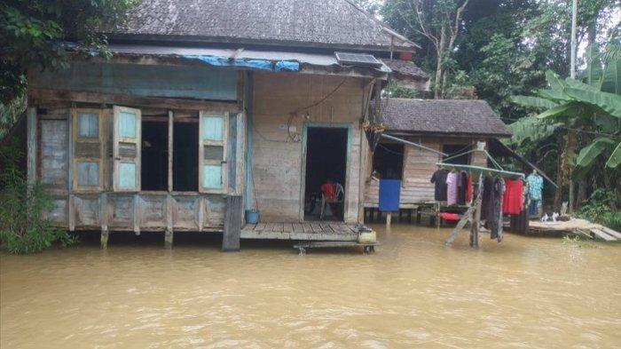 Banjir Kalteng : BPBD Sebut Banjir di Hulu Kapuas karena Curah Hujan Tinggi