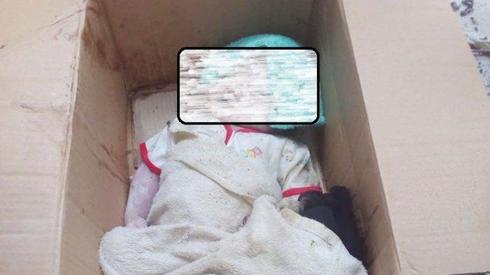 Mayat Bayi di Depan Rumah Kosong Gegerkan Warga Desa Sungkai, Saksi Mata Mengatakan ini