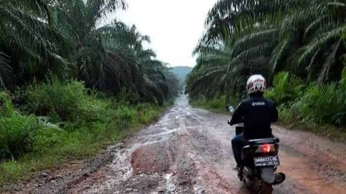 Hampir Lima Kilometer Jalan Menuju Tebingsiring Rusak, Dewan Tala Perjuangkan Pelepasan HGU-nya