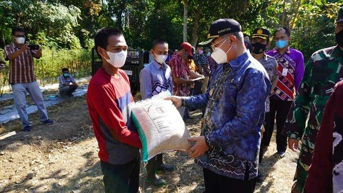 Bupati H Achmad Fikry menyerahkan secara simbolis benih kepada petani, dalam rangkaian panen perdana di Desa Telaga Langsat, Kecamatan Telaga Langsat, Kabupaten Hulu Sungai Selatan (HSS), Provinsi Kalimantan Selatan, Kamis (10/6/2021).