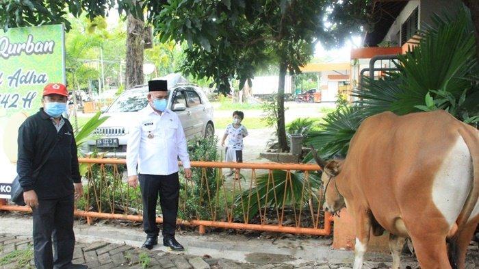 Bupati H Abdul Wahid HK, saat melihat sapi untuk hewan kurban di kantornya, Kota Amuntai, Kabupaten Hulu Sungai Utara (HSU), Provinsi Kalimantan Selatan, Rabu (21/7/2021).