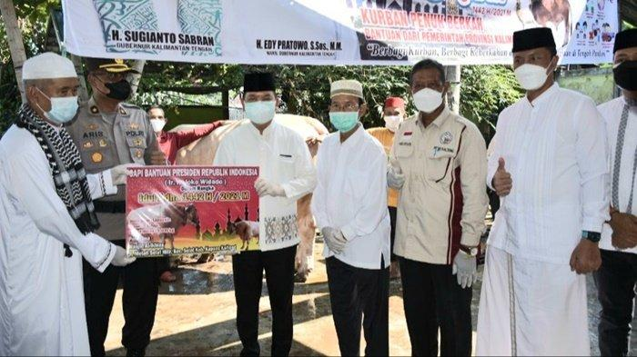 Bupati Kapuas Ben Brahim Serahkan Bantuan Sapi Kurban dari Presiden Jokowi