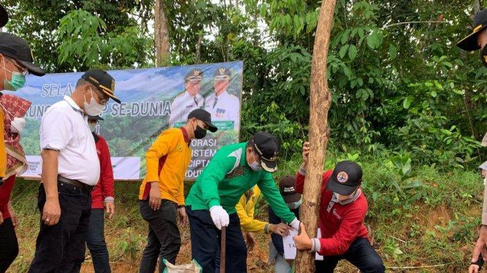 Peringati Hari Lingkungan Hidup Sedunia 2021, Bupati Tabalong Pimpin Penanaman Puluhan Batang Pohon