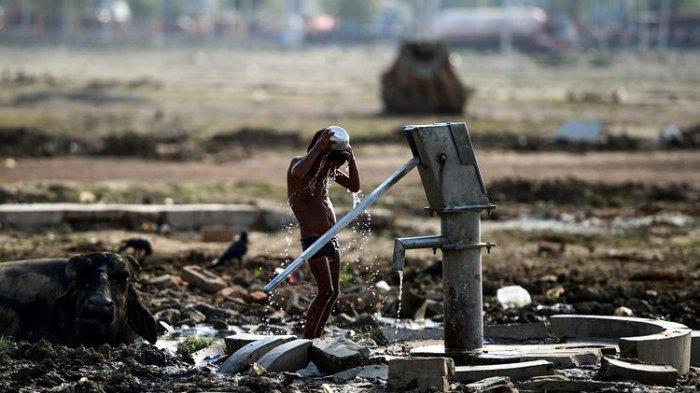 Gara-gara Cuaca Warga India Diminta Tak Minum Teh dan Kopi, Simak Penjelasannya