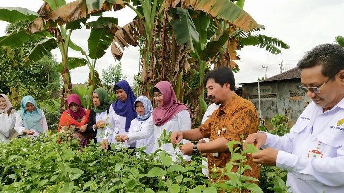Kebutuhan Bunga Melati Meningkat Di Kabupaten Banjar Dinas Ini Lakukan Budidaya Besar Besaran Banjarmasin Post