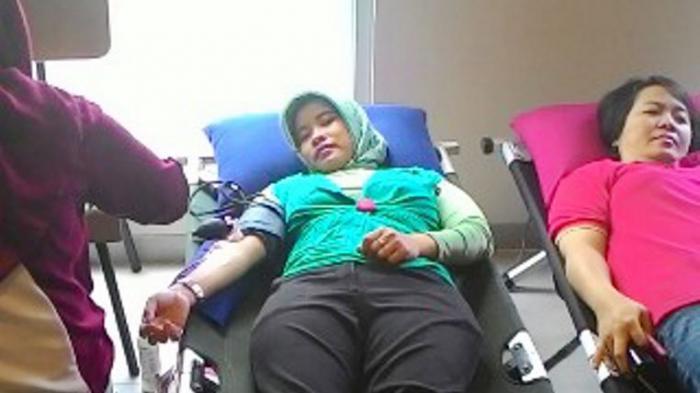 Donor Darah di Hotel TreePark
